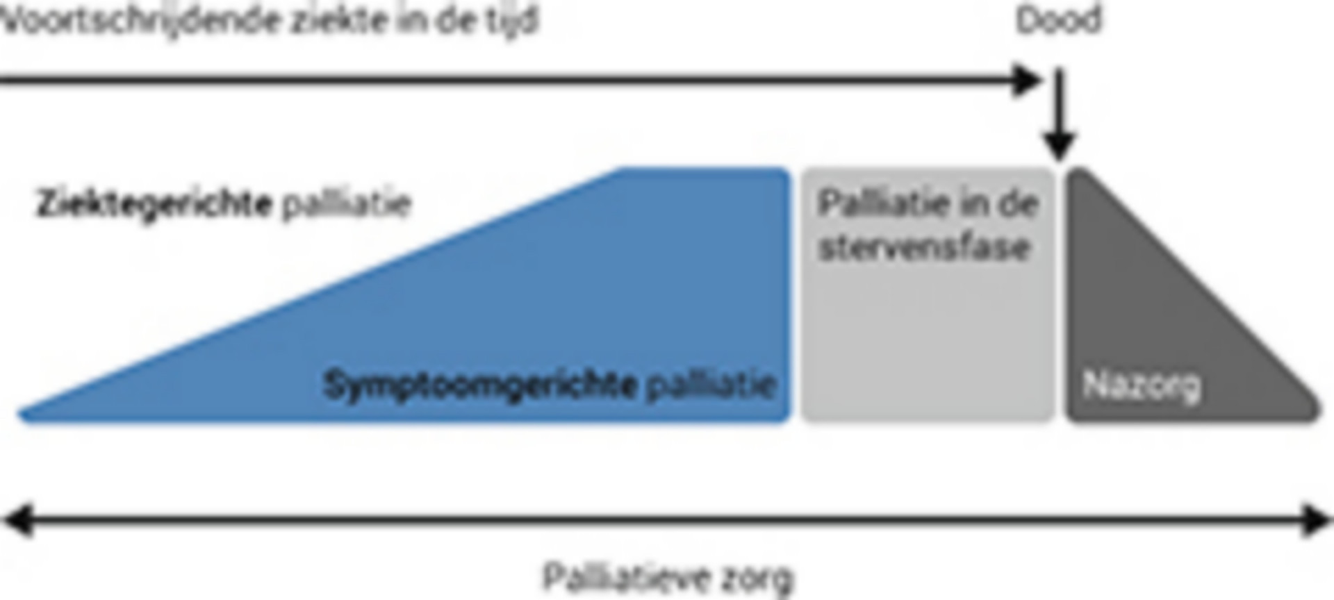 Begeleiding bij kritische beslismomenten in de palliatieve fase